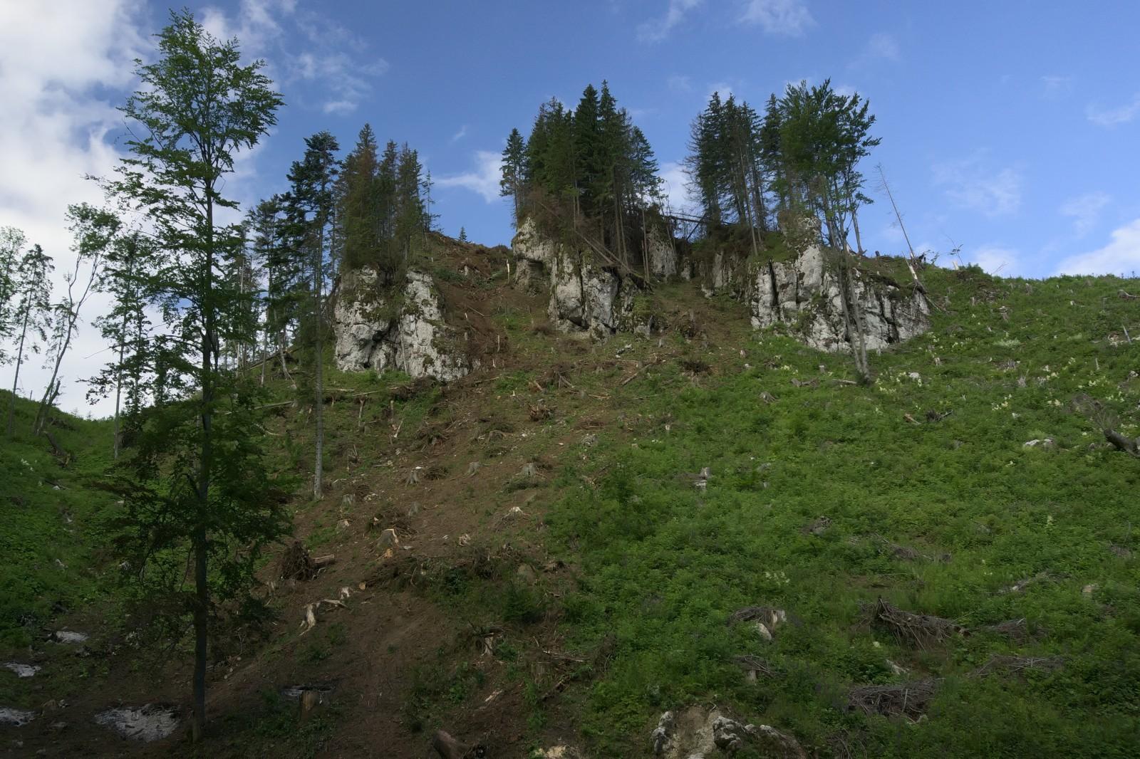 Cestou z Hut