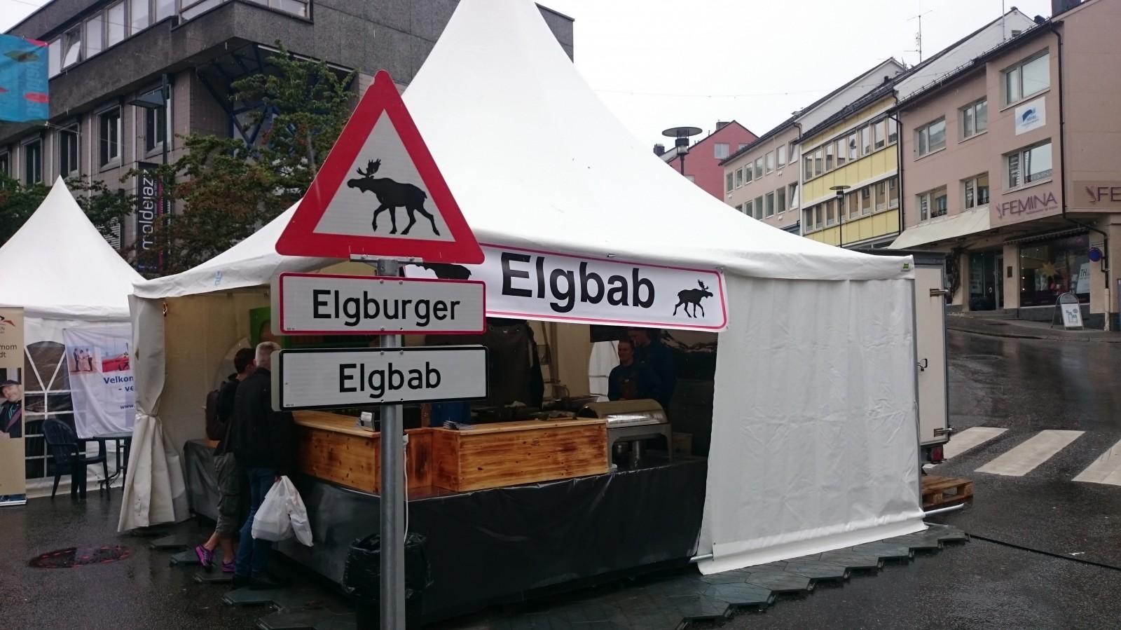 Elgbab v Molde